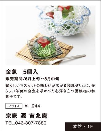 「宗家 源 吉兆庵」金魚 5個入販売期間/6月上旬~8月中旬